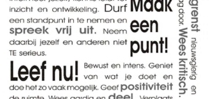 Manifesto Pure Streken 300