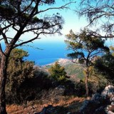 Puur Samos
