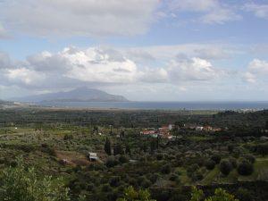 Olijfboomgaarden Samos